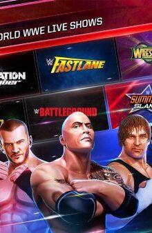 "WWE Mayhem - بازی کشتی کج "" جهنم دبلیو دبلیویی """