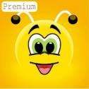 اپلیکیشن Learn languages for free - Fun easy Learn Premium آموزش زبان انگلیسی