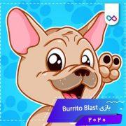 دانلود بازی Burrito Blast by Mariale