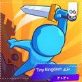 دانلود بازی Tiny Kingdom تینی کینگدام
