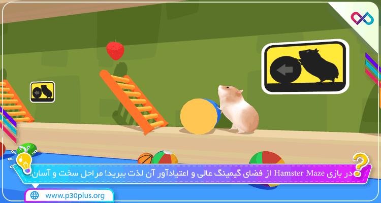 دانلود بازی Hamster Maze همستر ماز برای اندروید