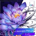 تصویر لوگوی بازی Colorscapes Plus کالر اسکاپس پلاس